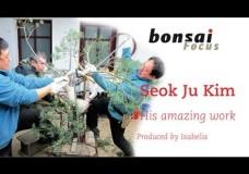 Big branch bending – Seok Ju Kim